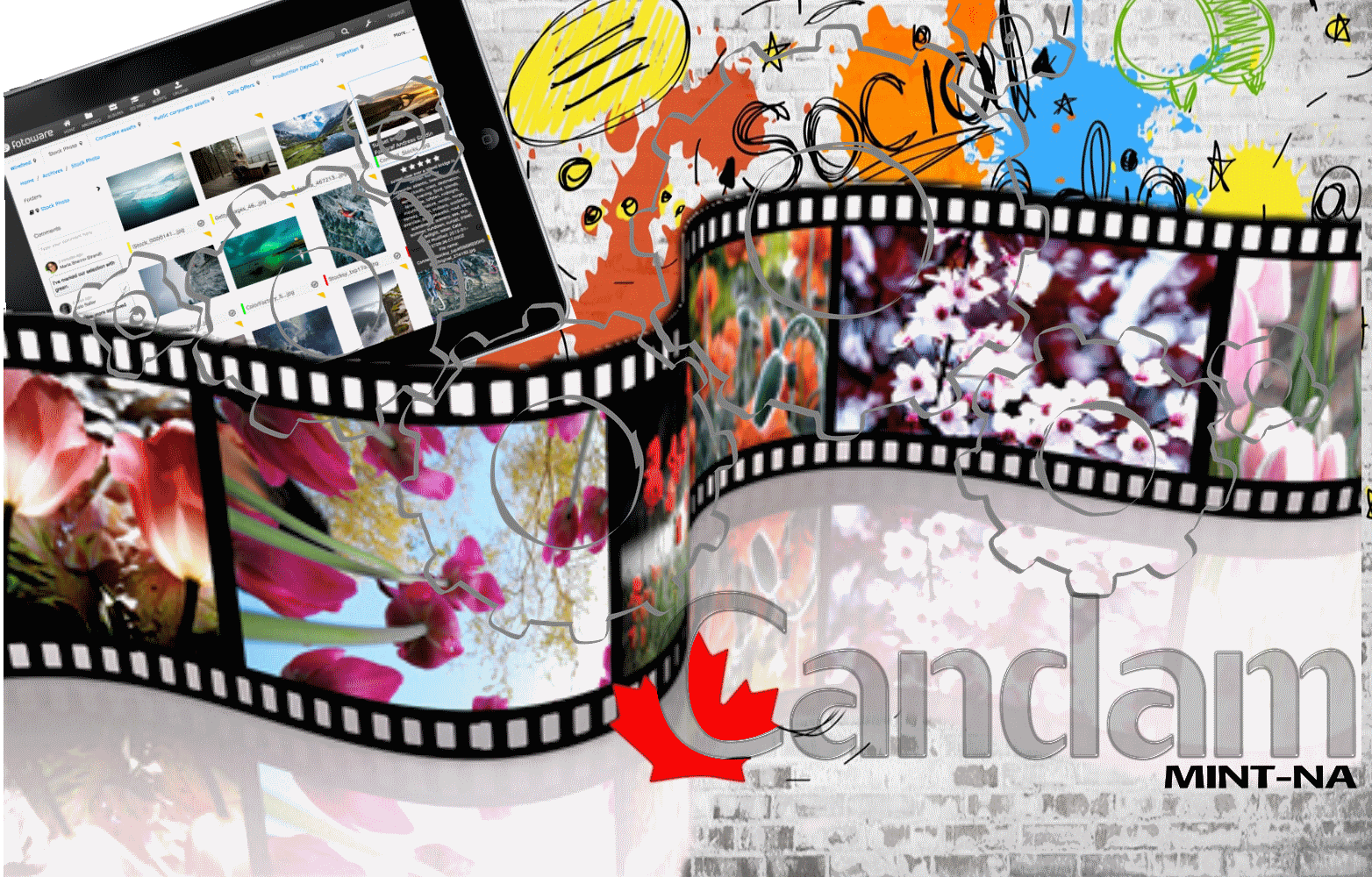 CanDAM ADD-ONS for DAM and CMS